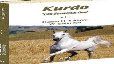 Photo of Kurdo ve Kurdis' i sevdim !