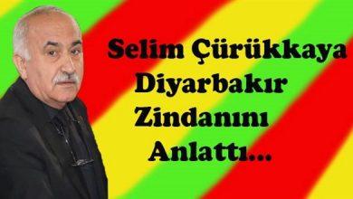 Photo of Diyarbakır Zindanı